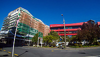 Vivian Street at 2pm, Saturday during lockdown for the COVID19 pandemic in Wellington, New Zealand on Saturday, 18 April 2020. Photo: Dave Lintott / lintottphoto.co.nz
