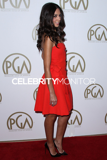 BEVERLY HILLS, CA - JANUARY 19: Terri Seymour at the 25th Annual Producers Guild Awards held at The Beverly Hilton Hotel on January 19, 2014 in Beverly Hills, California. (Photo by Xavier Collin/Celebrity Monitor)