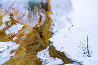 The Mammoth Hot Springs provides some dramatic and colorful designs in the rock cliff.