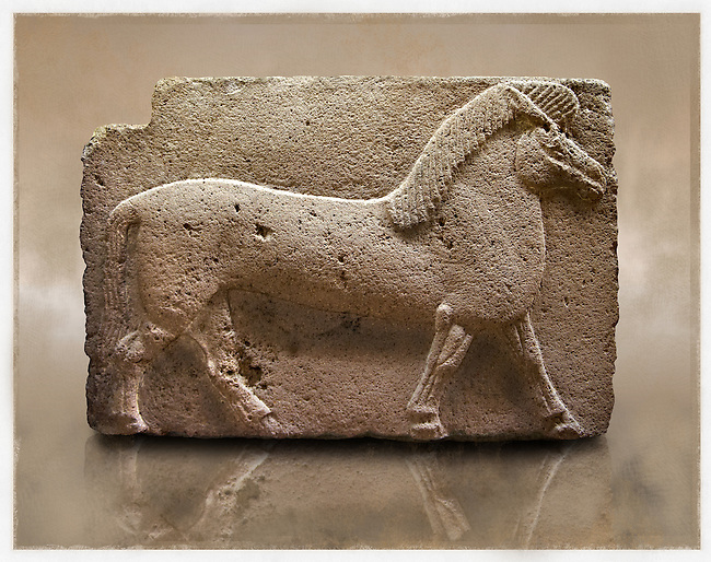 Picture of Phrygian releif sculpture Orthostat of a horse from Kucukevier, Ankara, Turkey. Museum of Anatolian Civilisations, Ankara. 7th century BC. Note the stylised leg muscels. 1