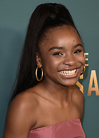 "SANTA MONICA - JANUARY 10:  Saniyya Sidney at the red carpet premiere party for FOX's ""The Passage"" at The Broad Stage on January 10, 2019, in Santa Monica, California. (Photo by Scott Kirkland/Fox/PictureGroup)"