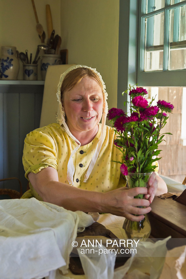 Old Bethpage, New York, U.S. 31st August 2013.  JOANNE SMITH of Deer Park is placing a vase of purple chrysanthemums on the kitchen table next a window in a building from the 1800's during the Olde Time Music Weekend at Old Bethpage Village Restoration. The yellow dress and white lace hat she is wearing are American Civil War era clothing, and the bowl of baked goods in front of her is covered with a white cloth.