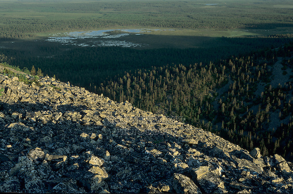 View from mountaintop down to moorland, Pyhätunturi National Park, Finland, July 2001