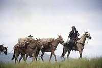 Cowboys, pack string