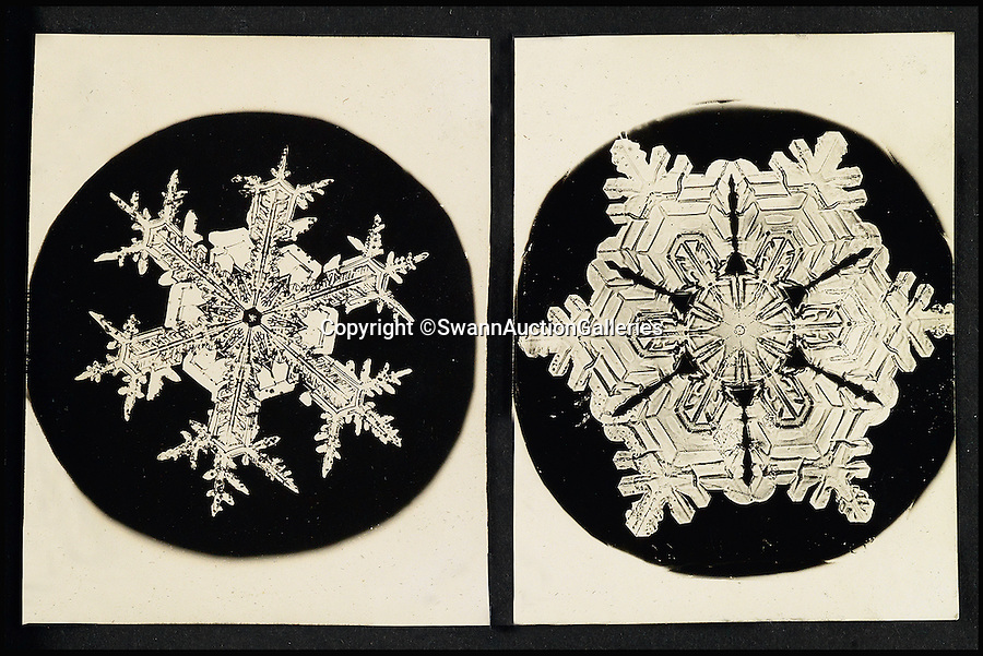"""BNPS.co.uk (01202 558833)<br /> Pic: SwannAuctionGalleries/BNPS<br /> <br /> First contact - Unique album that revealed the beauty and variety of snowflakes.<br /> <br /> This striking never-before-seen album captures the work of an obsessive photographer who proved all snowflakes are unique.<br /> <br /> Although initially shunned by scientists, Wilson """"Snowflake Man"""" Bentley's work bewitched the public after his pictures began to be published at the end of the nineteenth century. <br /> <br /> The eccentric snapper - who died after walking six miles home in a blizzard in 1931 - used a specially adapted bellows camera and microscope to capture the flakes after catching them on a blackboard. <br /> <br /> This extremely rare leatherette album of his work has emerged at auction - and as it spans the length of his career, some of the pictures could be the first ever images of snow flakes.<br /> <br /> The album is expected to fetch £21,000 on Thursday when it is sold by Swann Galleries in New York."""