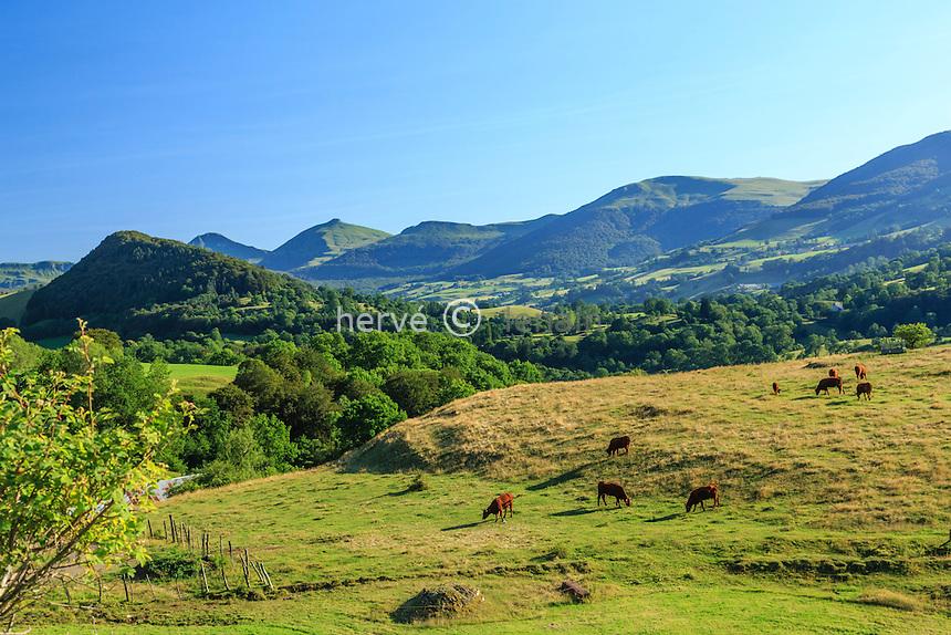 France, Cantal (15), Cheylade, paysage de la vallée de la Cheylade // France, Cantal, Cheylade,  the Cheylade valley