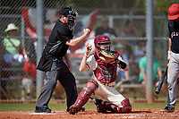 Saint Joseph's Hawks catcher James McConnon (14) throws the ball back to the pitcher as umpire Justin Bertsche calls a strike during a game against the Ball State Cardinals on March 9, 2019 at North Charlotte Regional Park in Port Charlotte, Florida.  Ball State defeated Saint Joseph's 7-5.  (Mike Janes/Four Seam Images)