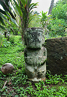 Tiki Pauto, in red keetu or volcanic tuff, carved into a small paepae or platform of a tomb, 80cm tall, with crowned and patterned head, tattooed mouth, pierced right armpit, hands on either side of the belly, and male genitalia, on the tomb of the daughter of the chief, at Tohua Pehekua, a small cemetery with 4 tombs of chief Te Hau Moea and his family, who died in the early 20th century, near the Iipona archaeological site, near the village of Puamau, on the island of Hiva Oa, in the Marquesas Islands, French Polynesia. Tiki sculptures are usually carved in wood or stone and represent Ti'i, a half-human half-god ancestor who is believed to be the first man. Tiki often have a huge head, symbolising power, and big eyes symbolising knowledge. Tiki are respected and are often placed outside houses or tombs as protective statues. Picture by Manuel Cohen