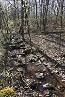 NWA Democrat-Gazette/FLIP PUTTHOFF <br /> Hikers follow a rocky trail that leads to Magnolia Falls.
