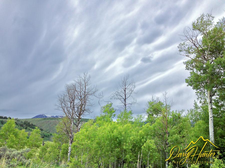 Teton Storm, Grand Teton Park
