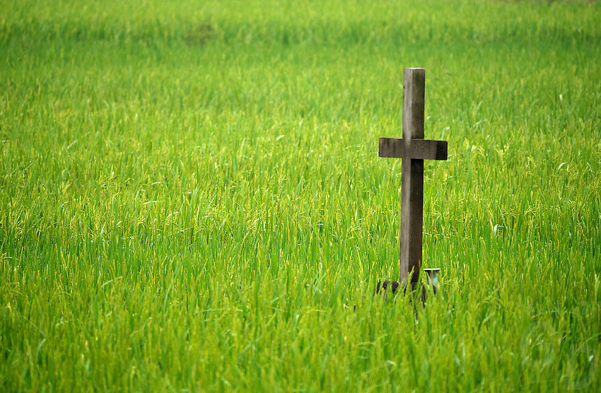 A grave in the middle of a Rice Field, North Vietnam
