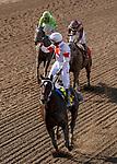 November 2, 2019 : Mitole, ridden by Ricardo Santana Jr., wins the Breeders' Cup Sprint on Breeders' Cup Championship Saturday at Santa Anita Park in Arcadia, California on November 2, 2019. Chris Crestik/Eclipse Sportswire/Breeders' Cup/CSM
