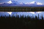 Wrangel St. Elias range