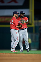 Pawtucket Red Sox Chad De La Guerra (23) and Josh Tobias (15) celebrate after closing out an International League game against the Rochester Red Wings on June 28, 2019 at Frontier Field in Rochester, New York.  Pawtucket defeated Rochester 8-5.  (Mike Janes/Four Seam Images)
