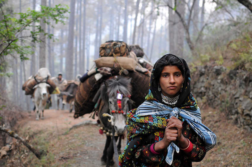 Mariam, 17, leads her family's caravan through the foothills of the Himalayas.