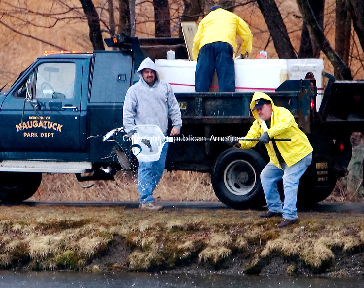 NAUGATUCK, CT. 12 April 2007-041207SV02--From left, Shawn Kuczenski, Jim Grella, and Dan Hennessey of the Public Works Dept. stock Baummer's Pond in Naugatuck with fish Thursday. Saturday is the annual fishing derby for kids at the pond.<br /> Steven Valenti Republican-American