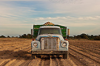 Potato Truck<br />