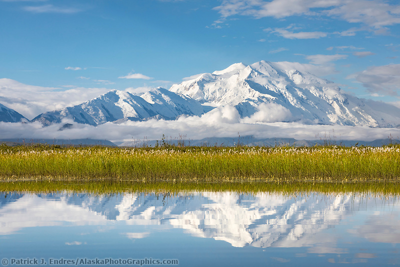 Denali reflects in a small tundra pond, Denali National Park