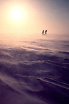 Alaska, Prudhoe Bay, Wildlife researchers, Arctic, blowing snow, spring windstorm, North Slope, Beaufort Sea, North America, .