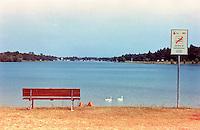 Segrate (Milano), Idroscalo. Un uomo che prende il sole, due cigni, una panchina e un cartello di divieto di balneazione --- Segrate (Milan), the Idroscalo (seadrome). A man sunbathing, two swans, a banch and a bathing prohibition sign