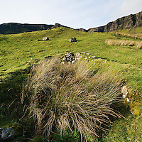 Overgrown stone walls of old croft house, Trotternish, Isle of Skye, Scotland