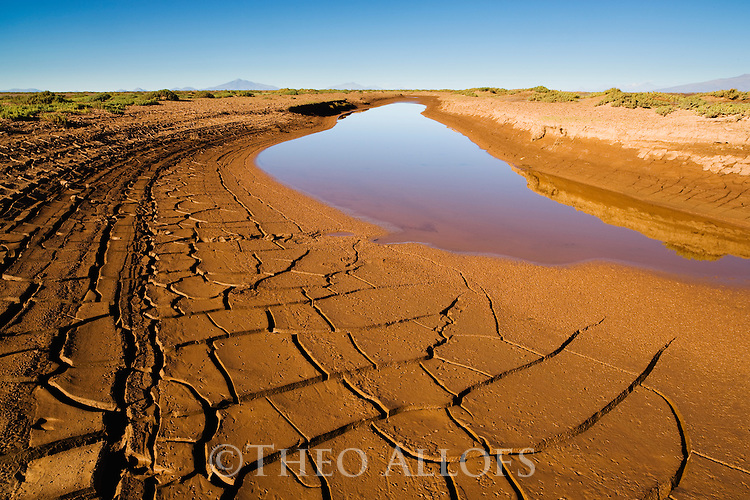 Bolivia, Altiplano, drying lagoon with mud cracks