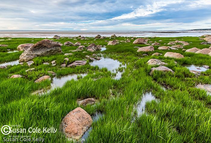 Crowes Pasture Beach, Dennis, Cape Cod, Massachusetts, USA