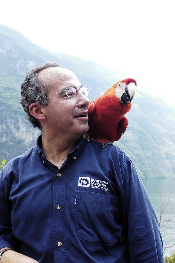 Felipe Calderon poses with a parrot for photographers at the Sumidero Canyon park. Friday's visit to the park was part of Calderon's campaign tour of the state of Chiapas. Calderon is surging ahead in the Mexican presidential elections.