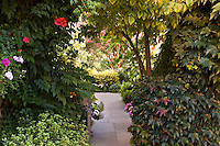 Stone path walkway through shady foliage garden into  to sun light