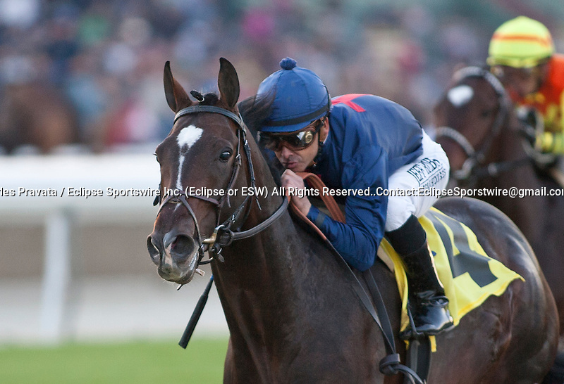 December 26, 2011. Mr. Commons and Mike Smith win the Sir Beaufort Stakes on opening day at Santa Anita Park in Arcadia, CA.
