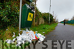 Dog poop bin overflowing on the skinny mile in Tralee.