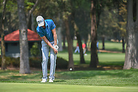 Daniel Berger (USA) chips on to 11 during round 2 of the World Golf Championships, Mexico, Club De Golf Chapultepec, Mexico City, Mexico. 3/2/2018.<br /> Picture: Golffile | Ken Murray<br /> <br /> <br /> All photo usage must carry mandatory copyright credit (&copy; Golffile | Ken Murray)
