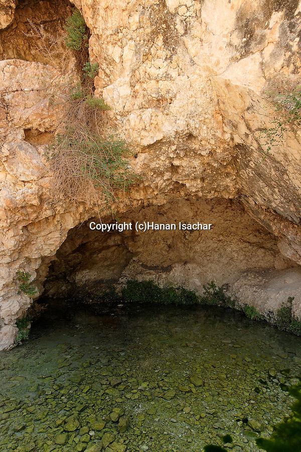 Israel, Harod Spring in Harod Valley