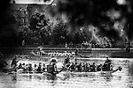 Pix: Shaun Flannery/shaunflanneryphotography.com<br /> <br /> COPYRIGHT PICTURE&gt;&gt;SHAUN FLANNERY&gt;01302-570814&gt;&gt;07778315553&gt;&gt;<br /> <br /> 12th July 2014.<br /> Dragon Boat Racing<br /> Lakeside, Doncaster.