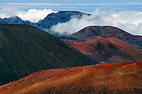 Diversity of color, shapes and forms add to the unique natural landscape of the crater in HALEAKALA NATIONAL PARK on Maui in Hawaii