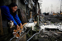 In the early morning hours a women takes out her cats. People in this area live in small homemade huts, many made entirely from rubbish and leftover building materials that they found on the nearby garbage dump. These houses are all illegal, since no one has the acquired permissions to live on the land. People have been living here for up to twenty years - but everyday they might get moved and their neighbourhood demolished to make room for new apartment blocks that they could never afford to buy.