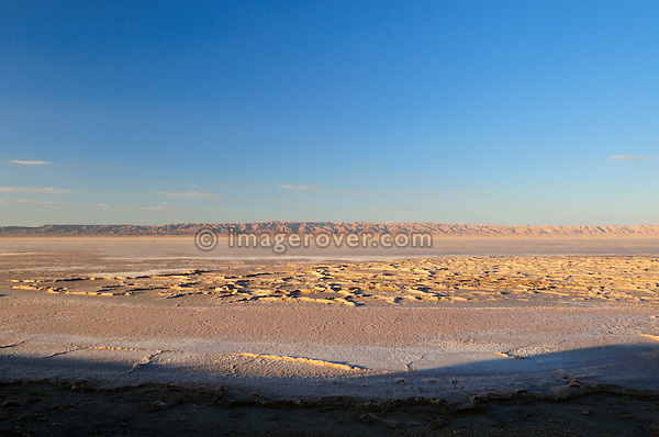 Africa, Tunisia, Chott el Jerid between Kebili and Tozeur. Salty crust on the Chott el Jerid in southern Tunisia.
