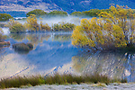 Glenorchy Lagoon with morning fog at sunrise; grass in foreground covered with hoar frost, South island, New Zealand
