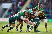 Dom Barrow of Leicester Tigers is double-tackled. Aviva Premiership match, between Northampton Saints and Leicester Tigers on April 16, 2016 at Franklin's Gardens in Northampton, England. Photo by: Patrick Khachfe / JMP