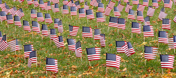 Small American flags flap in the early morning breeze as members of student government and the Office of Veterans Affairs placed 2500 American flags in the Quad at DePaul University's Lincoln Park Campus on Veterans Day, Monday, Nov. 11, 2013. The flags were planted in remembrance of military veterans who have died since 9-11. The event kicked off a morning of remembrances and memorials across both of DePaul's campuses. (Photo by Jamie Moncrief)