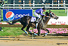 Polar Sunrise winning at Delaware Park on 8/19/15