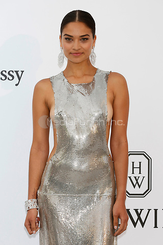 Shanina Shaik at the amfAR Gala Cannes 2017 at Hotel du Cap-Eden-Roc on May 25, 2017 in Cap d'Antibes, France. Credit: John Rasimus /MediaPunch ***FRANCE, SWEDEN, NORWAY, DENARK, FINLAND, USA, CZECH REPUBLIC, SOUTH AMERICA ONLY***