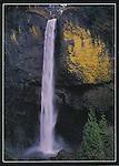 KS 005. Latourell Falls. 5x7 postcard