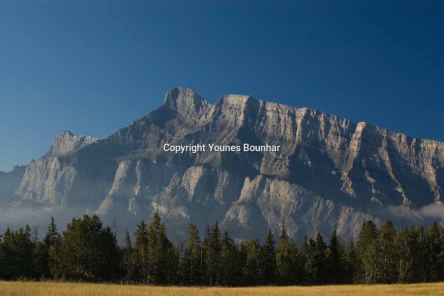Early morning mist clearing at the base of Mount Rundle, Banff, close-up