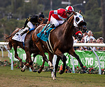 DEL MAR, CA: August 17: #9 Acclimate and Florent Geroux runaway in the Grade II Win and you're in Breeders' Cup Turf Del Mar Handicap at Del Mar Thoroughbred Club on August 17, 2019 in Del Mar, California (Photo by Chris Crestik/Eclipse Sportswire)