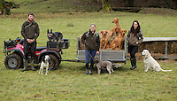 FAO JANET TOMLINSON, DAILY MAIL PICTURE DESK<br />Pictured: Farm employees with some of the dogs at the sheep enclosure Wednesday 23 November 2016<br />Re: The Dog House in the village of Talog, Carmarthenshire, Wales, UK