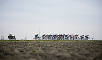 Gent-Wevelgem 2013.Leading echelon plowing its way through the open, windy Fields of De Moeren (lowest point in Belgium; 3m under sea-level)..