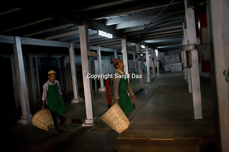 Factory workers, Indrey sarki (right) and Kamal Subba (left) bring the rolled leaves for drying process at Makaibari Tea Estate factory, Kurseong in Darjeeling, India.
