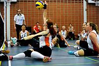 ASSEN - Volleybal, Internationaal zitvolleybal toernooi, Nederland - Rusland, 01-07-2017,  smash van Karin van der Haar