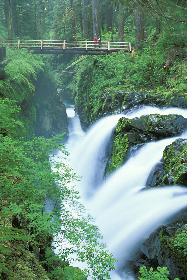 Soleduck Falls, Soleduck River, Olympic National Park, Washington